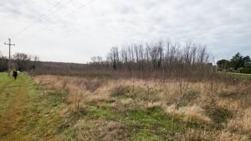 Građevinsko i poljoprivredno zemljište na prodaju Poreč